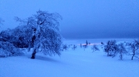 1002_01 Winterimpressionen